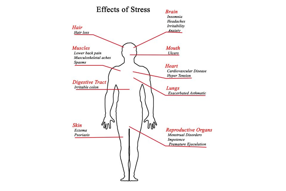 What are the signs of stress